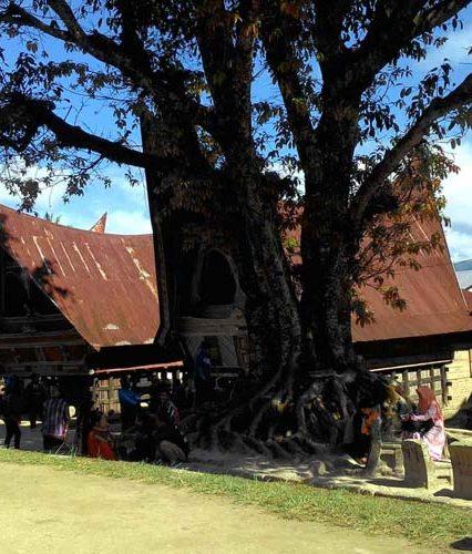 Rahasia Wisata Budaya Batu Kursi Raja Siallagan Samosir