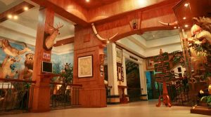 Rahmat International Wildlife Museum & Gallery (RIWMG)