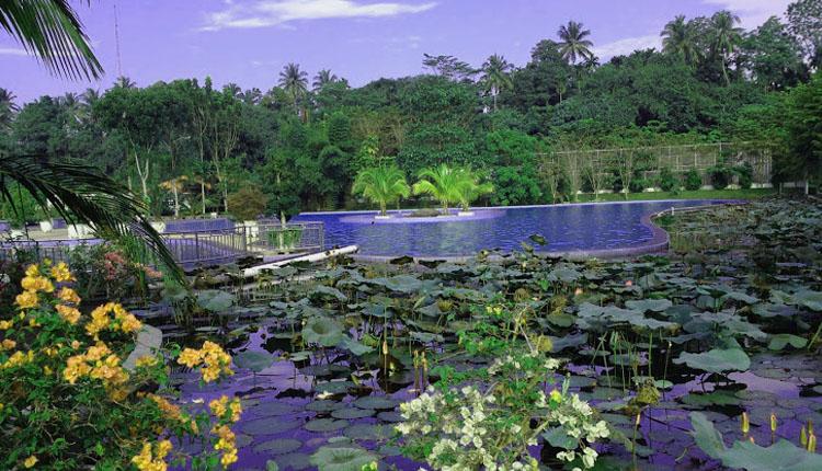 TourToba.com - Wisata Danau Toba - tempat wisata alam armaya nature pancuran batu - wisata alam sumatera utara - wisata Danau Toba
