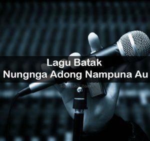 Lirik Lagu Nungnga Adong Nampuna Au